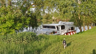 Wild angelegt bei Chalon-s-Saône