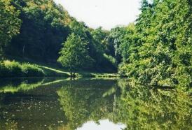 Hier an dieser Flussbiegung fände sich vielleicht auch ein schönes Plätzchen!