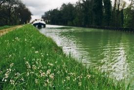 Canal de Borgogne, auch hier kann man anlegen wo es einem grad gefällt