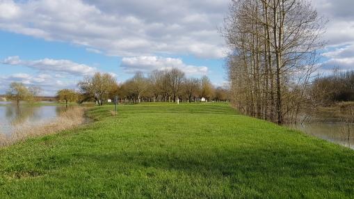 Blick auf den Camperplatz, rechts er Doubs, links die Saône