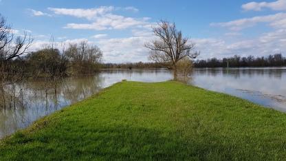 Die Landspitze am Zusammenfluss des Seitenarms des Doubs und der Saône
