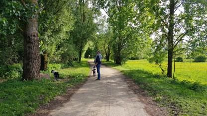 Ideal auch für Hund und Mensch - alle teilen sich den Weg ohne Probleme