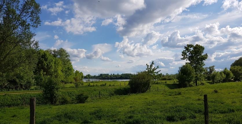 Grün, grün, grün! Im Hintergrund die Saône