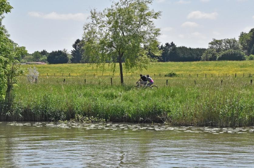 Radfahrer im Grünen. Die Treidelpfade eignen sich wunderbar für Fahradtouren