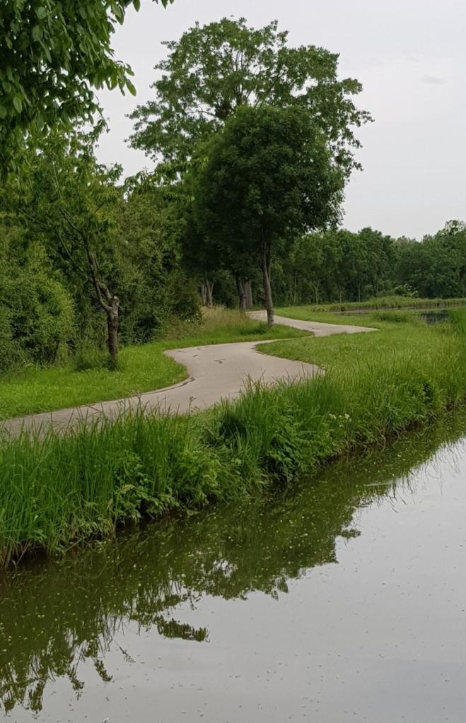 Wie der Kanal, schlängelt sich auch der Treidelpfad durch das Land durch die grüne Natur