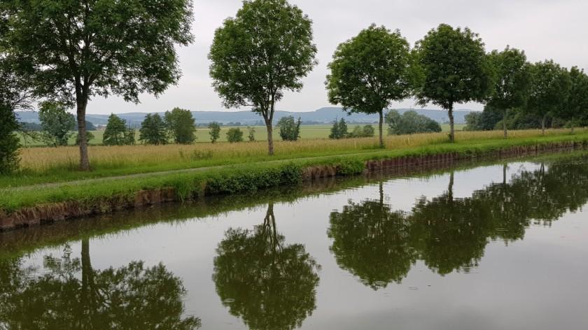 Blick vom Kanal aus durch eine Allee und über Felder hinweg auf in der Ferne die ersten sichtbaren Rebberge