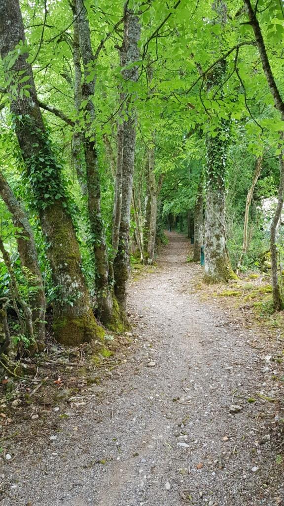 Vom Dorf aus geht es hier hinauf, auf einen Waldweg, zum Kanal