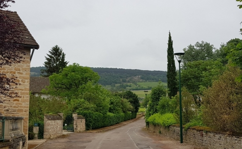 Santenay - Blick vom Dorf aus auf die Rebberge