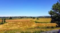 Das Loire-Tal. Der Fluss mäandert irgendwo zwischen uns und dem Fuss des Hügels in der Ferne