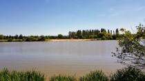 Der See in Pierrefittet-sur-Loire. Macht Lust auf ein Bad