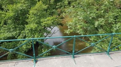 Wieder ein Kanalbrückchen. Von oben Blick hinunter auf kleinen Fluss mit Uferwald