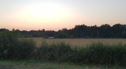 Landschaft während der Hunde-Abendrunde gegen 22 Uhr