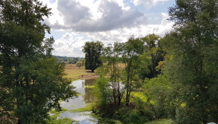 Von der Kanalbrücke aus ein toter Flussarm und sphrliches Grün