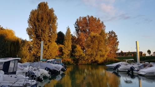 Chalon, der Hafen. Die Bäume sind noch grün, werden hier jedoch von der Abendsonne vergoldet