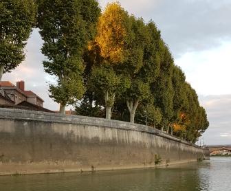 Chalon, der Hafen. Soviel Kaimauer haben wir noch nie gesehen. Auch der Wasserspiegel der Saône liegt sehr tief