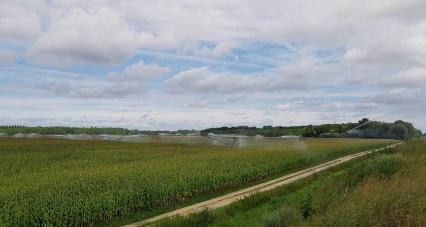 So riesige Bewässerungsanlagen laufen Tag und wohl auch Nacht