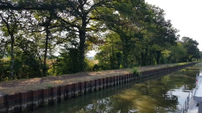 Trockenes Grans am Ufer, schüttere Bäume. Wasserstand sinkend