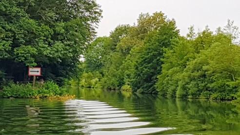 Einbahnfluss, wir kommen von links, stromabwärts Fahrende nehmen die andere Seite einer kleinen Insel