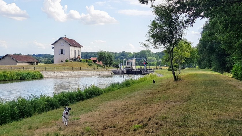 20190713_Hunde_Schleuse Scey
