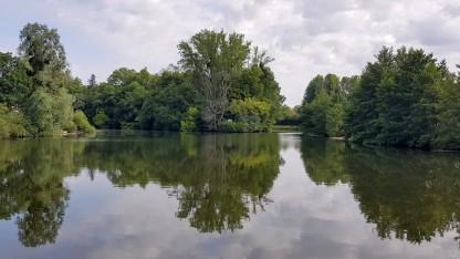 Der Fluss teilt sich, und für einen Moment ist es nicht klar, wo es hier zwischen den vielen Bäumen durch geht