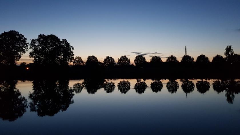 Abendstimmungen sind immer wieder wunderschön, hier die Bäume am gegenüberliegendel Ufer, die sich in der Saône spiegeln