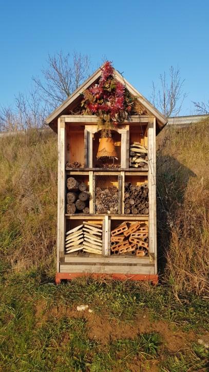 Das Bienenhaus vom Port Royal