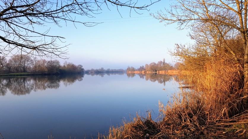 Die Saône in bestem Winterlicht I