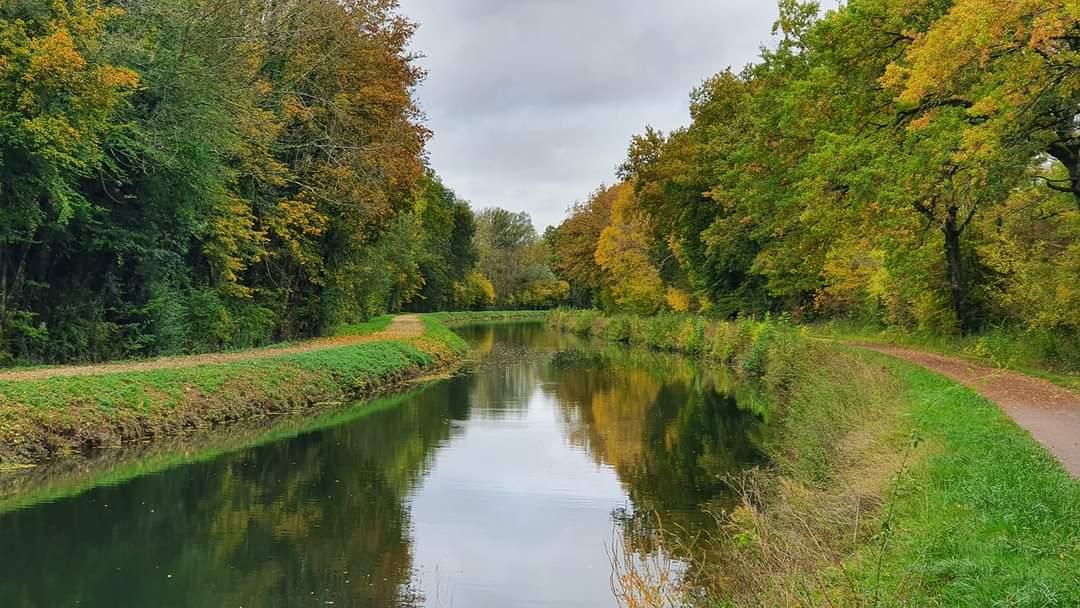 Waldumsäumter Kanal; in leichten Bögen durch den Herbst