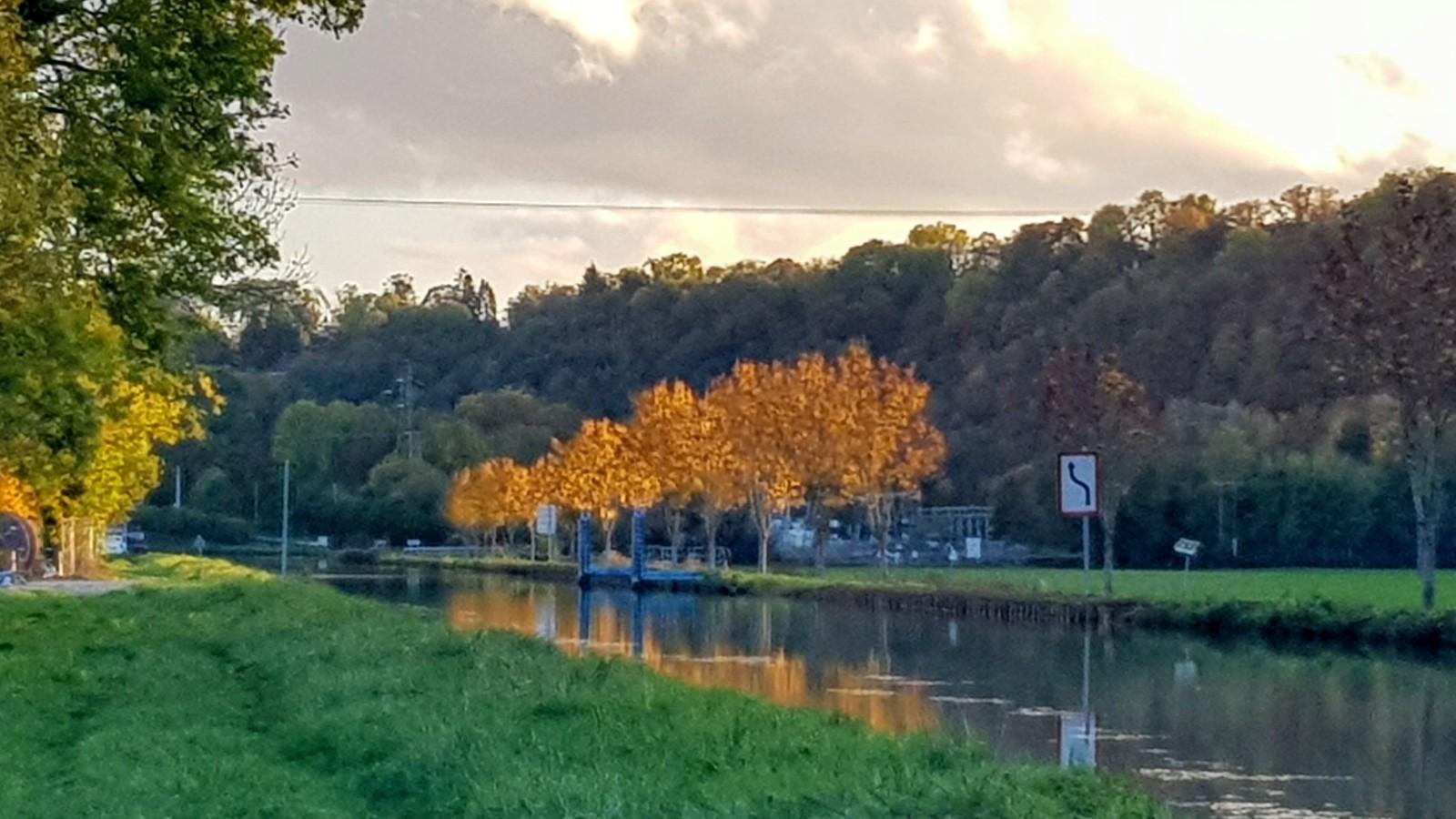 Abendlicht auf dem Kanal, die Ahorne in Gold getaucht