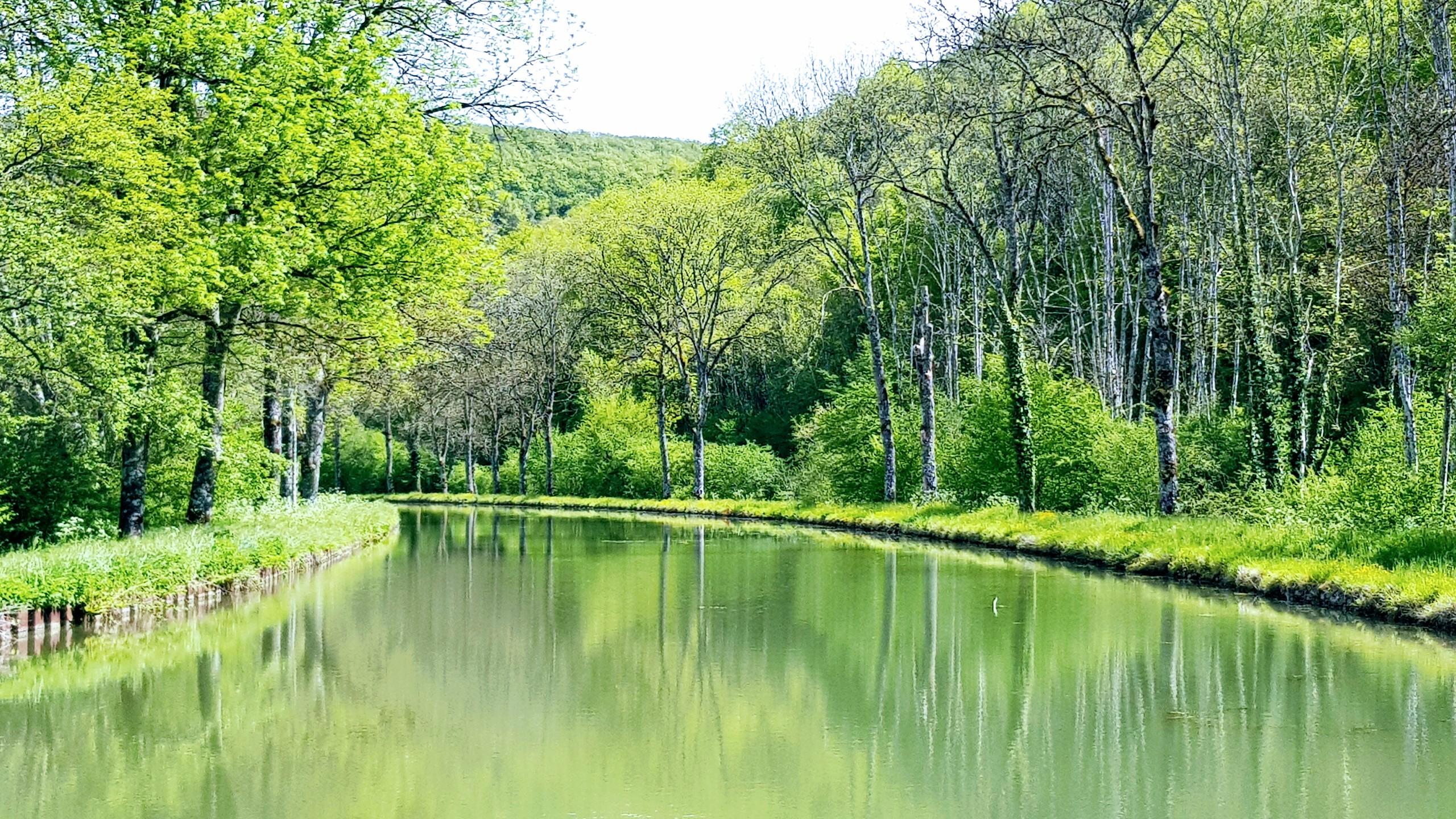 Der Kanal schlängelt sich dem Wald entlang. Gut zu wissen, dass niemand entgegenkommen wirdGewundene Strecke zwischen zwei Schleusen, man sieht nie weit, aber wir wissen, dass niemand entgegenkommen wird
