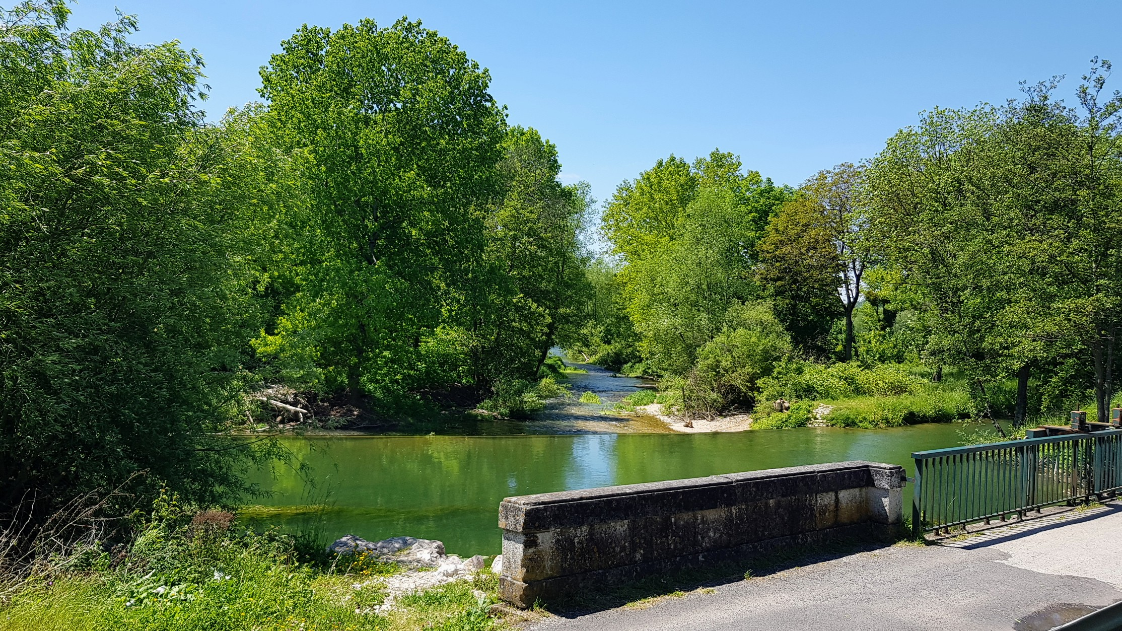 Natur pur: Verschiedene Marne-Arme, Kiesbänke urwaldartiger Bewuchs, ganz nah bei der nächsten Schleuse