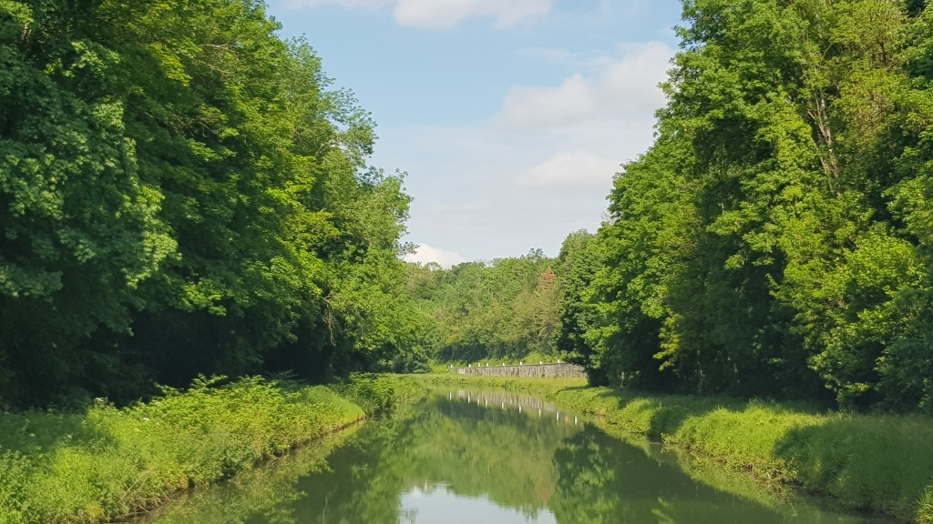 Von Wald umsäumter Kanalabschnitt. Eine der letzten Kurven, ab nun wird der Kanal ziemlich gerade
