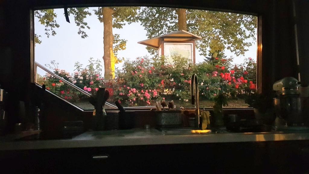 Ausblick von der Küche auf die Rosen